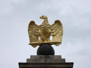 Aigle napoléonien